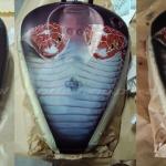 Cobra w airbrushing Daniel Baum
