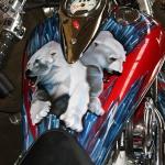 Kawasaki VN airbrushing Daniel Baum (4)